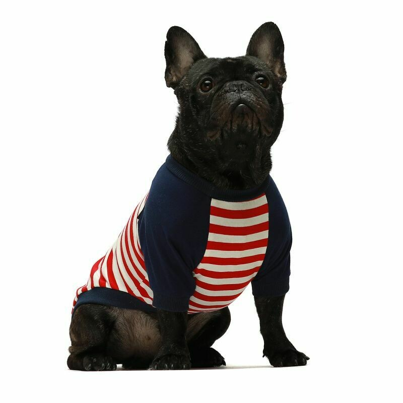 FW Dog Clothes Red Stripe Large