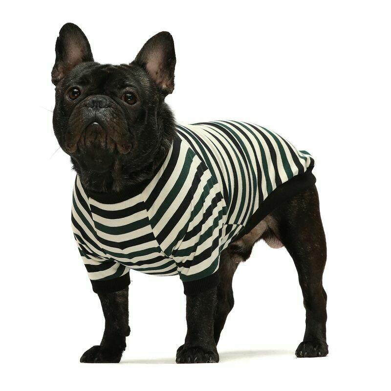 FW Dog Clothes Green Stripe Medium