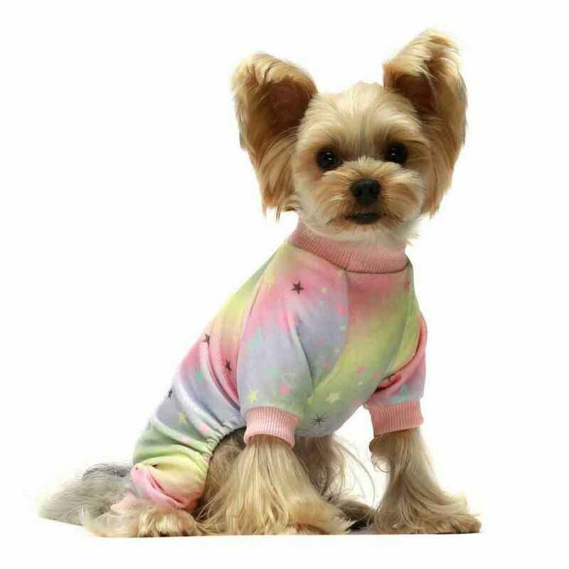 FW Dog Clothes Rainbow XS