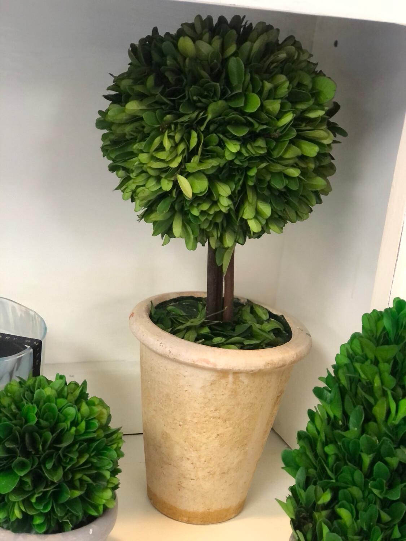 NHG Large Topiary Greenery