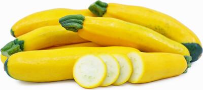 Jersey Yellow Zucchini