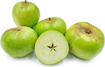 Jersey Greening Apples