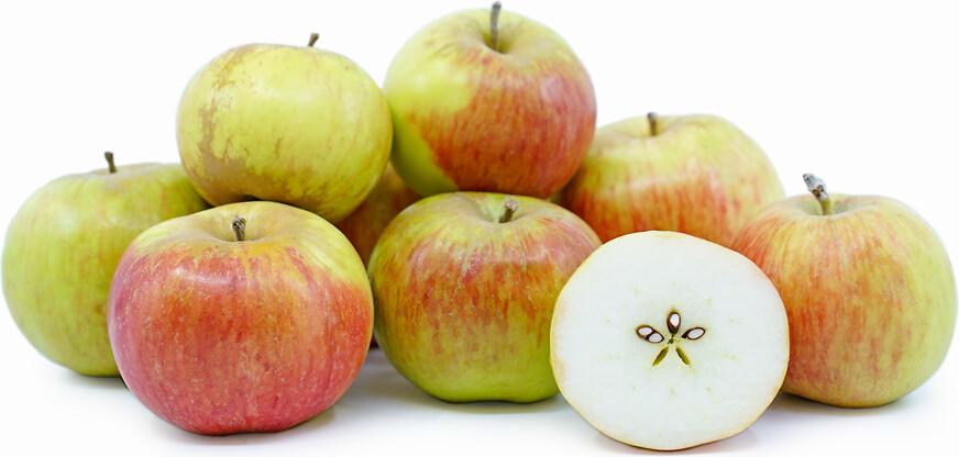 Jersey Courtland Apples