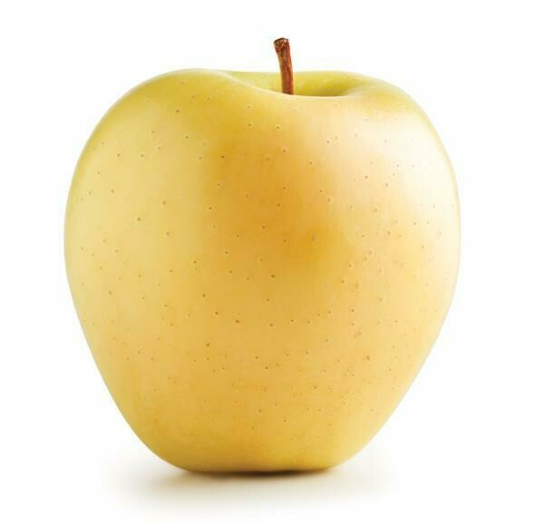 Jersey Golden Delicious Apples