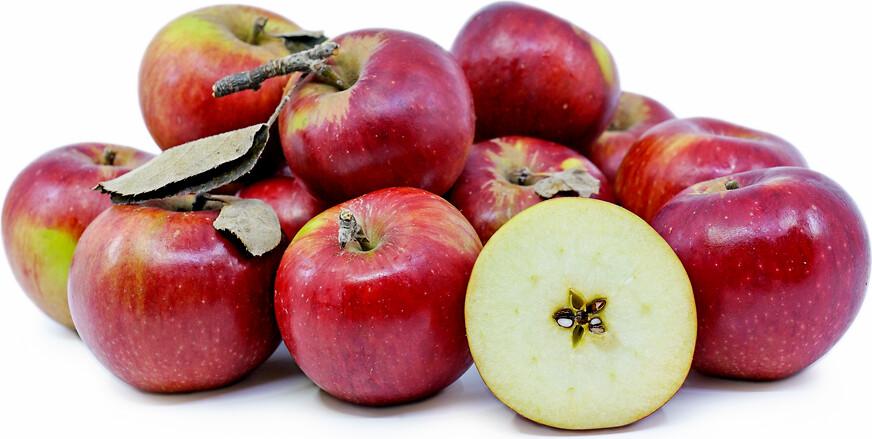 Jersey Winesap Apples