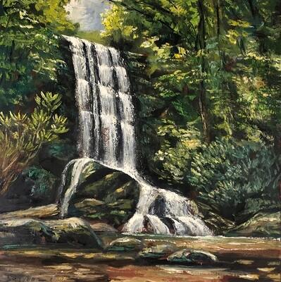 Upper Catawba Falls, Morning Light