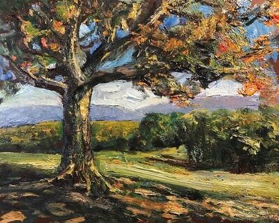 Oak Tree On A Hill In Autumn