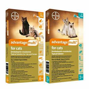 Anti-Pulgas, Advantage Multi, para Gato