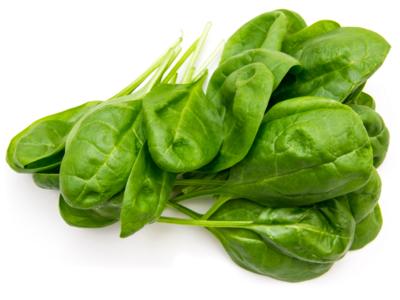 Heirloom Bloomsdale Spinach- Individual Seed Pack
