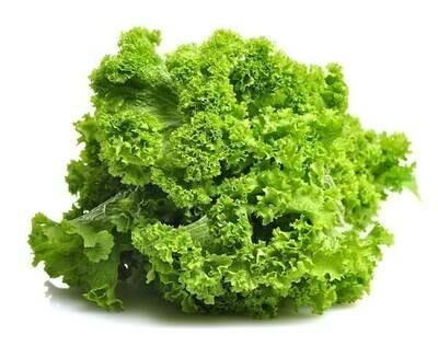 Heirloom Mustard Green- Individual Seed Pack