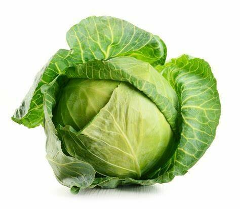 Heirloom Golden Acre Cabbage- Individual Seed Pack