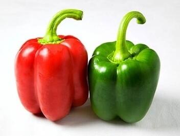 Heirloom Yolo Wonder Bell Pepper - Individual Seed Pack