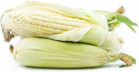 Heirloom White Sweet Corn - Individual Seed Pack