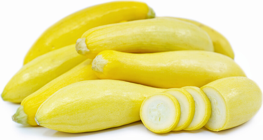 Heirloom Yellow Crookneck Squash - Individual Seed Pack