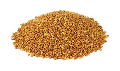Heirloom Alfalfa Microgreen - Individual Seed Pack