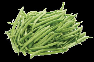Heirloom Kentucky Brown Pole Beans - Individual Seed Pack