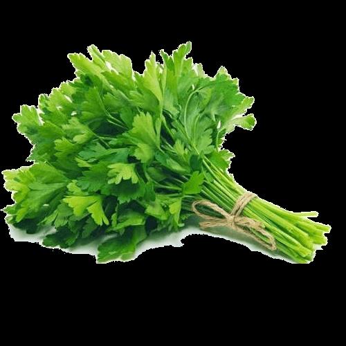 Heirloom Parsley - Herb -  Individual Seed Pack
