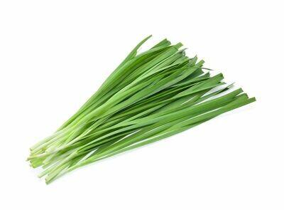 Heirloom Chives - Herb - Individual Seed Pack