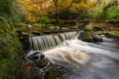 Stepping Stones -  Tollymore Forest - Northern Ireland