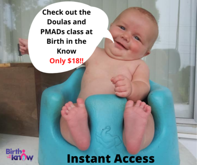 Doulas and Perinatal Mood and Anxiety Disorders (PMADs)
