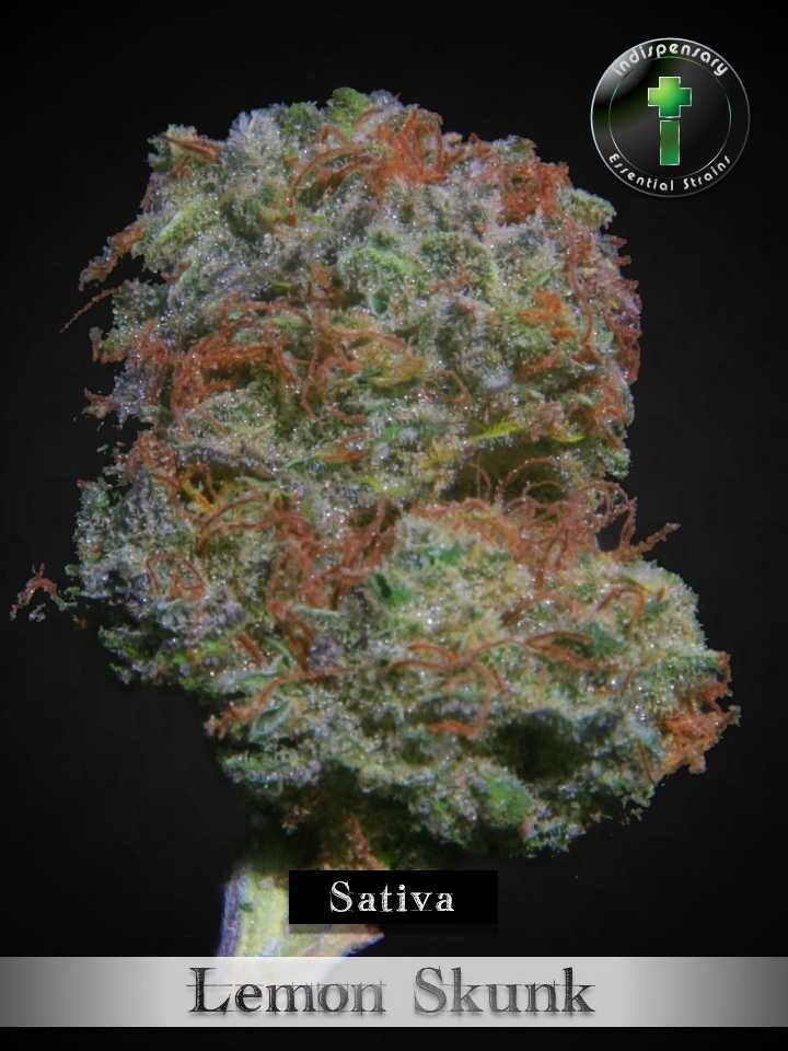 Green Crack (Sativa)
