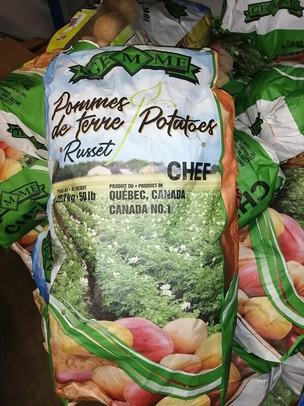 Pomme de terre  Blanche Russet