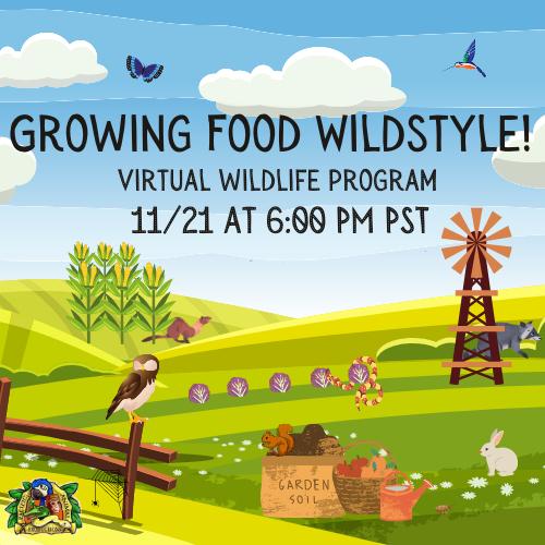 Growing Food Wildstyle - Virtual Family Wildlife Program