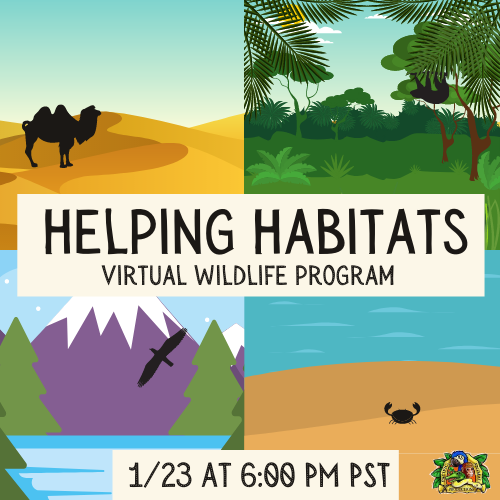 Helping Habitats - Virtual Family Wildlife Program