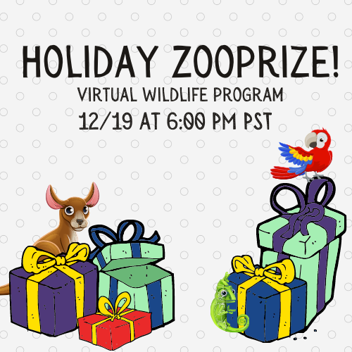 Holiday Zooprize! - Virtual Family Wildlife Program