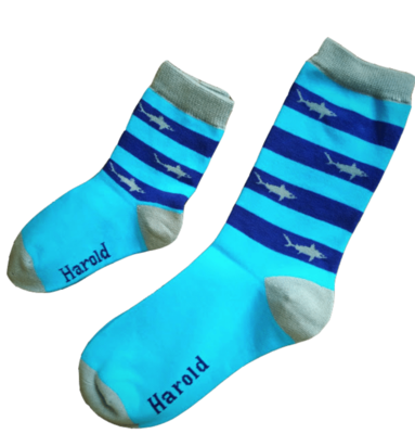 FREDRICK HAROLD SHARKS AND STRIPES SOCKS 6-10