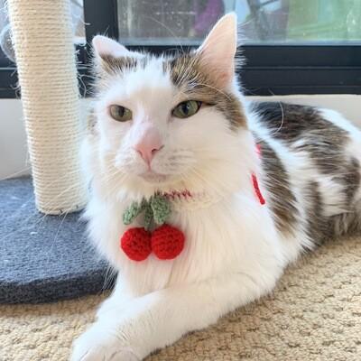 LOVELINESS STUDIO - CROCHET PET COLLAR CHERRY