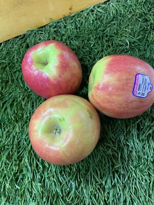 Apple-Pink Lady