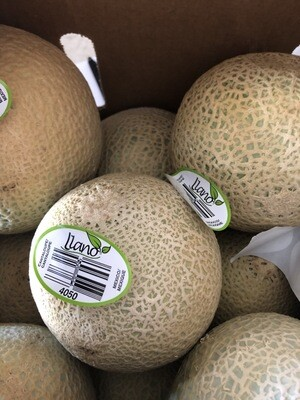 Melons - Cantaloupe, Hlubik's Own