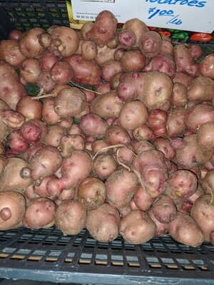 Potatoes - Jersey Fresh Red
