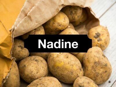 Nadine Potatoes (washed)