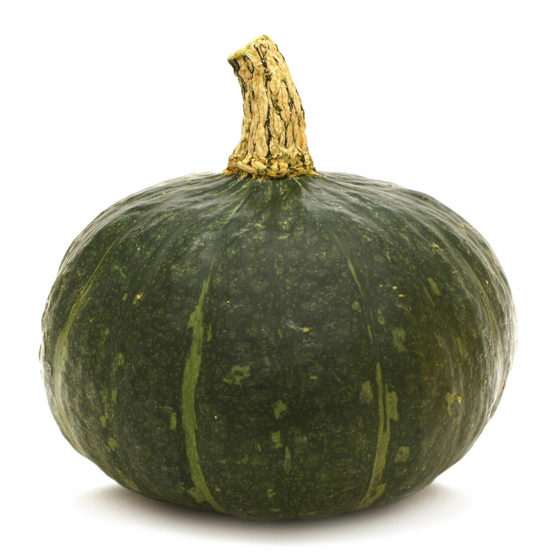 Pumpkin- Squash