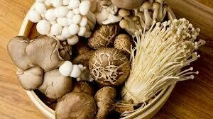 Wild Mushroom & Sage