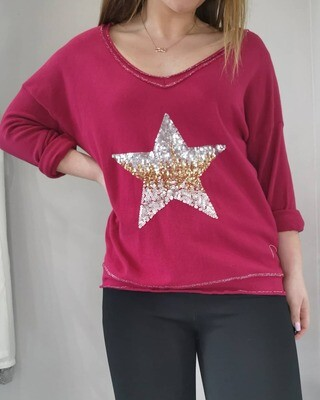 Sparkly Star V Neck Top