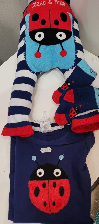 Baby outfit, Ladybird Bird 3 piece, Leggins, top & socks