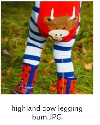 Baby outfit, Highland Cow Leggings & Top