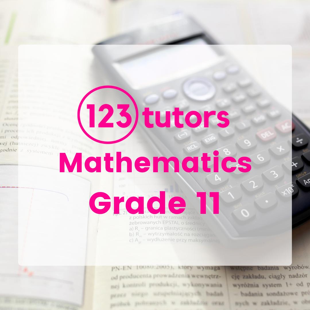CAPS Grade 11 Mathematics (Video Course)