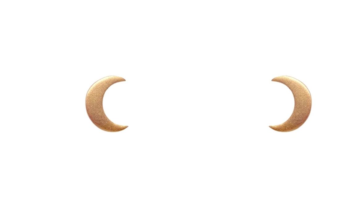 Bronwen Tiny Charm Post Crescent Moon