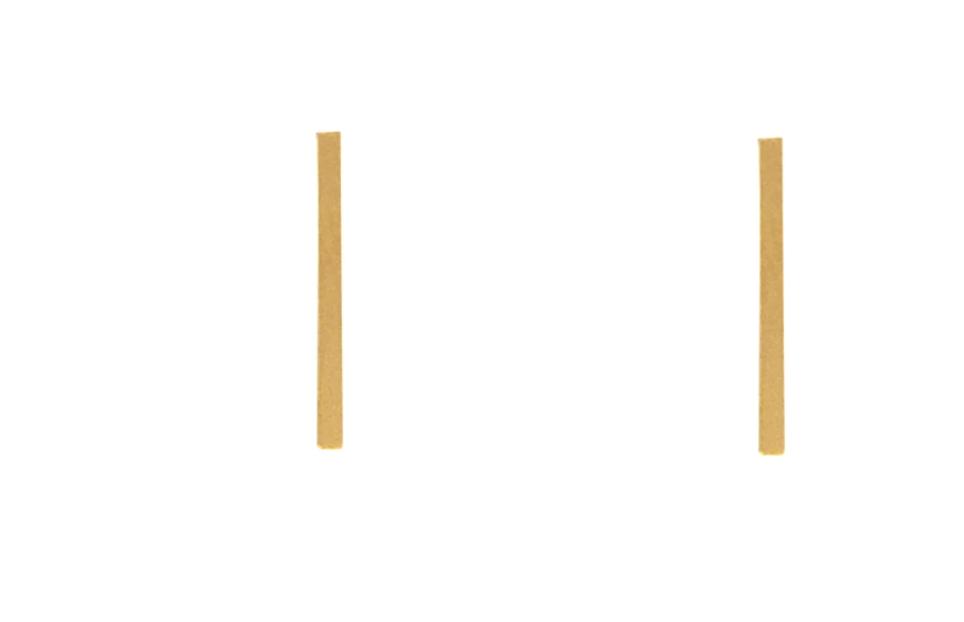 Bronwyn Tiny Charm Post Matchstick