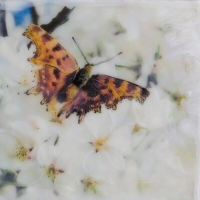Encaustic Mixed Media- 6x6 Gallery Depth