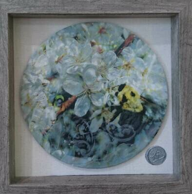 Encaustic Mixed Media  10x10 Framed