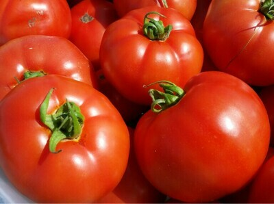 T5 Farms Red Slicing Tomatoes (2 lbs)