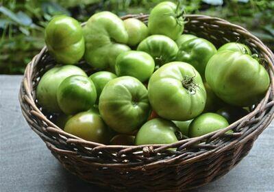 Green Tomatoes from TerraStay Farm (1 pint)