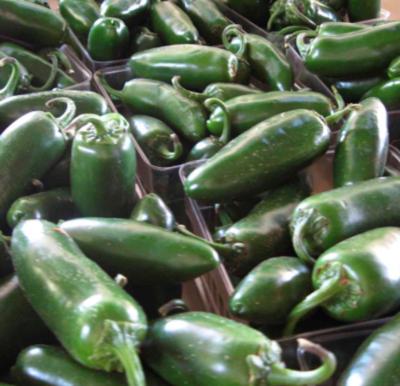T5 Farms Jalapeño Peppers (1 lb)