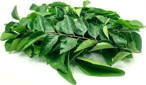 Fresh Curry Leaf Bag