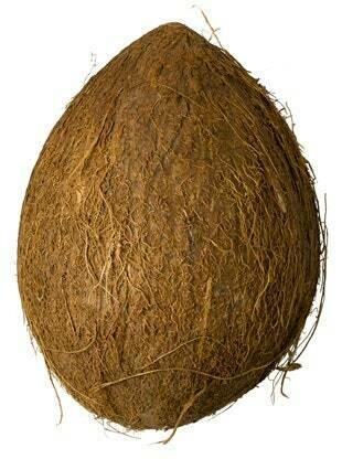 Coconut Pooja